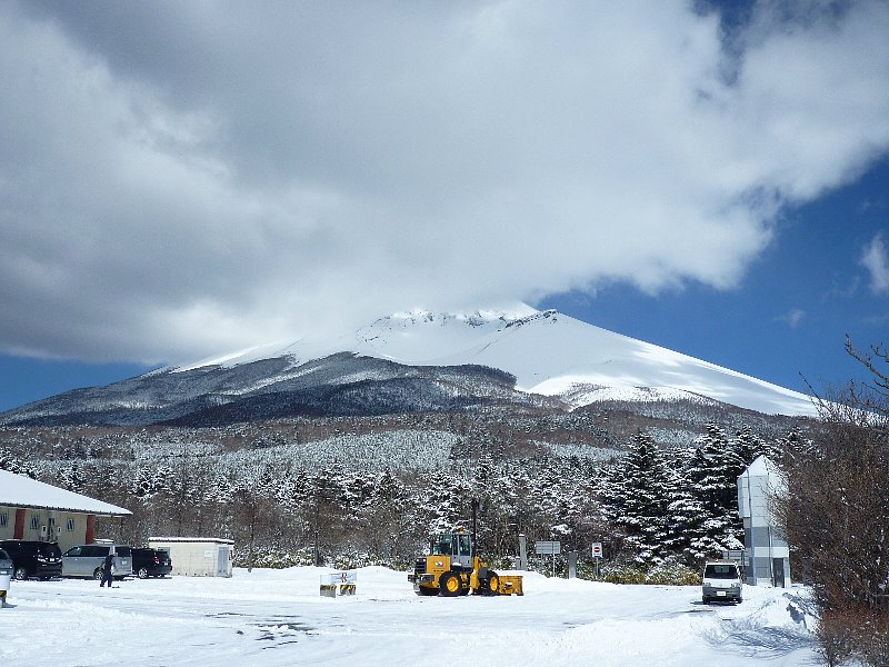 毎月第1金曜日は、富士山南面森林調査の日(^O^)/