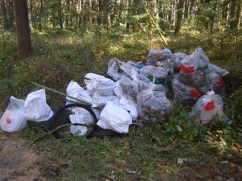 世田谷区立北沢中学校の皆さんと清掃活動を実施しました!