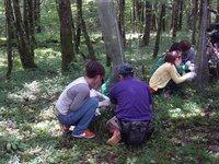森づくり.JPG
