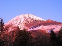 元旦の赤富士.jpg