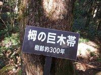 151030y_041.JPG