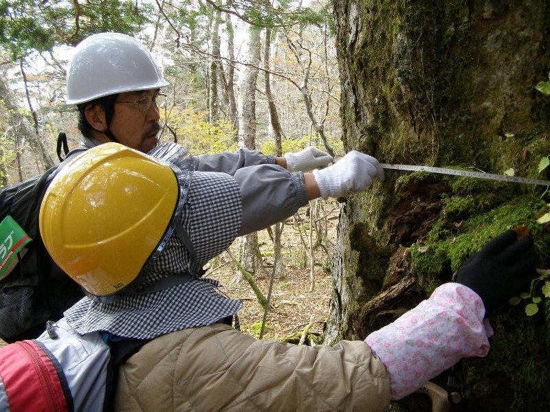 富士山南面森林調査に行ってきました!!