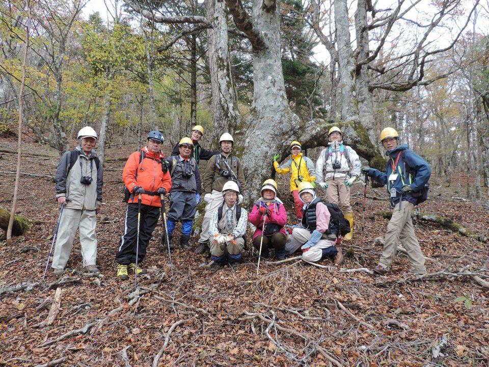 富士山南面森林調査を行いました。