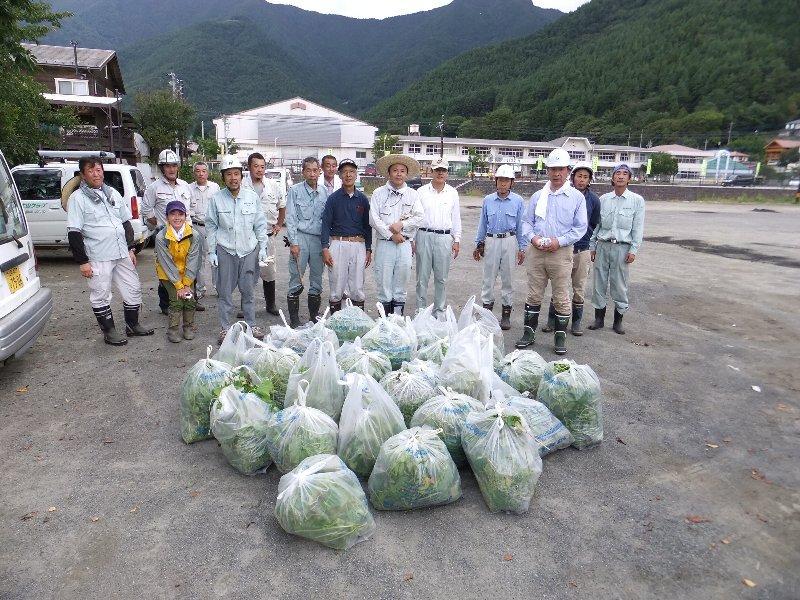 富士河口湖町建築協議会の皆さんがアレチウリ駆除を実施!