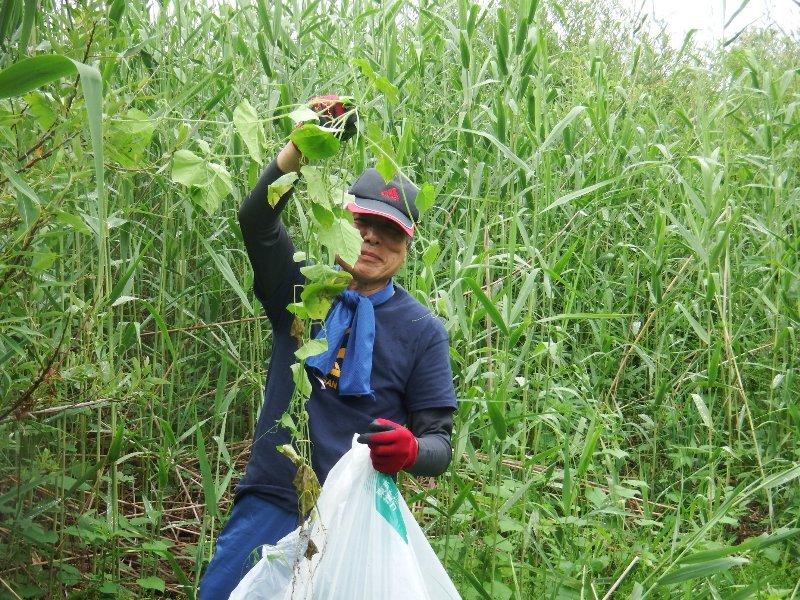 http://www.fujisan.or.jp/Event/images/180624y-009.JPG