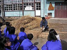 もりの学校で、茅葺きの体験学習する子どもたち
