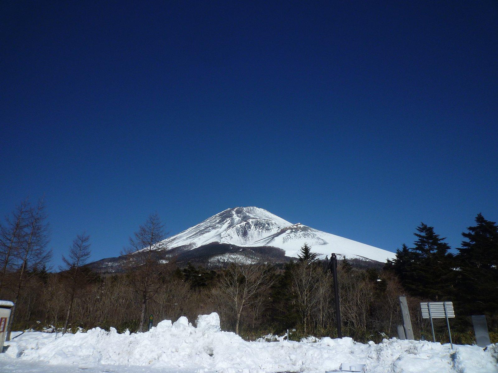 富士山南面森林調査継続実施中!!