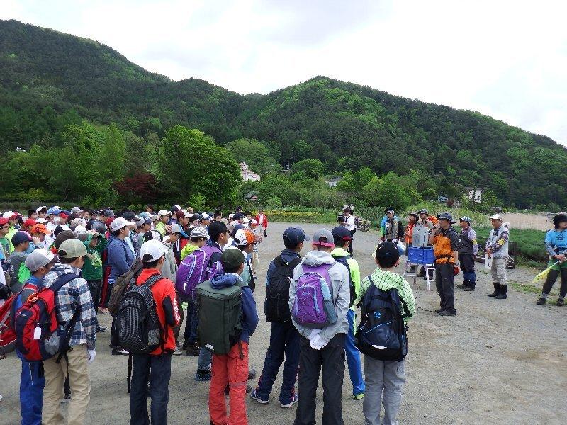 日本大学豊山中学校1年生の皆さんと外来種の駆除活動を行いました!