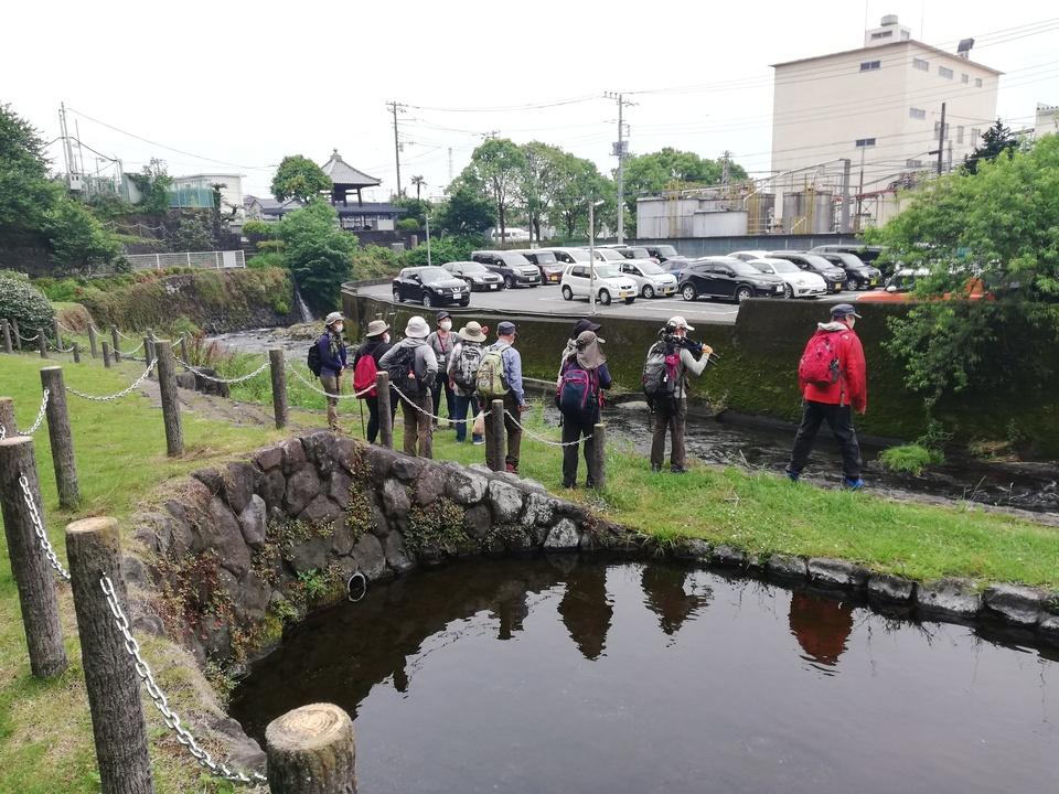 5/22 海岸美化清掃と東海道湧水ツアーを開催しました