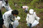 富士山清掃活動の様子