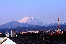 社屋(東京・立川市)からはもちろん富士山が見え、社長は0mから山頂まで歩くほど富士山好き